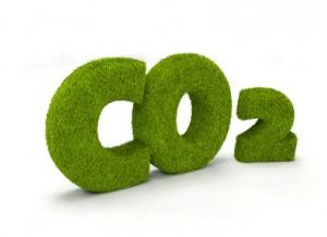 Grass CO2